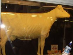 Butter Cow