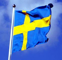 Sweeden Flag