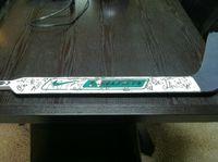 Hockey Stick from HA