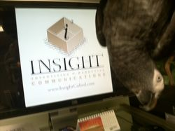 Insight Logo Kizzy