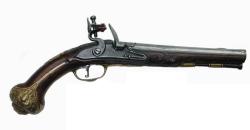 Gun Muzzleloader