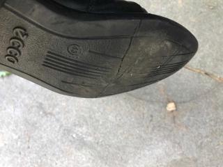 Shoe Sept 2017