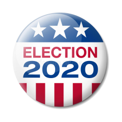 2020 Election Image
