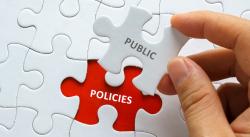 Public Policy Puzzle
