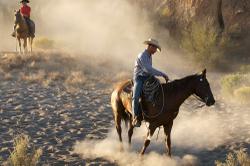 Cowboy_dust