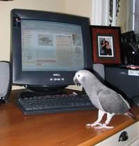 Kunta_computer