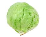 Iceberg_lettuce