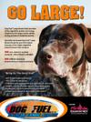 Dog_fuel_magsmall